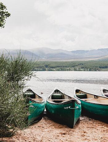421879 Scotia Baldow Meadows Kincraig webpage location Loch Morlich 350x4603